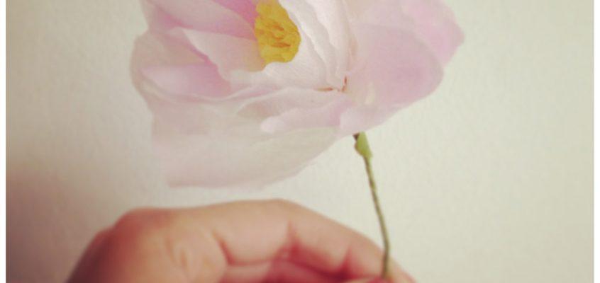 Taller de flores de papel